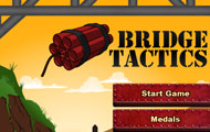 thumbnail of Bridge tactics